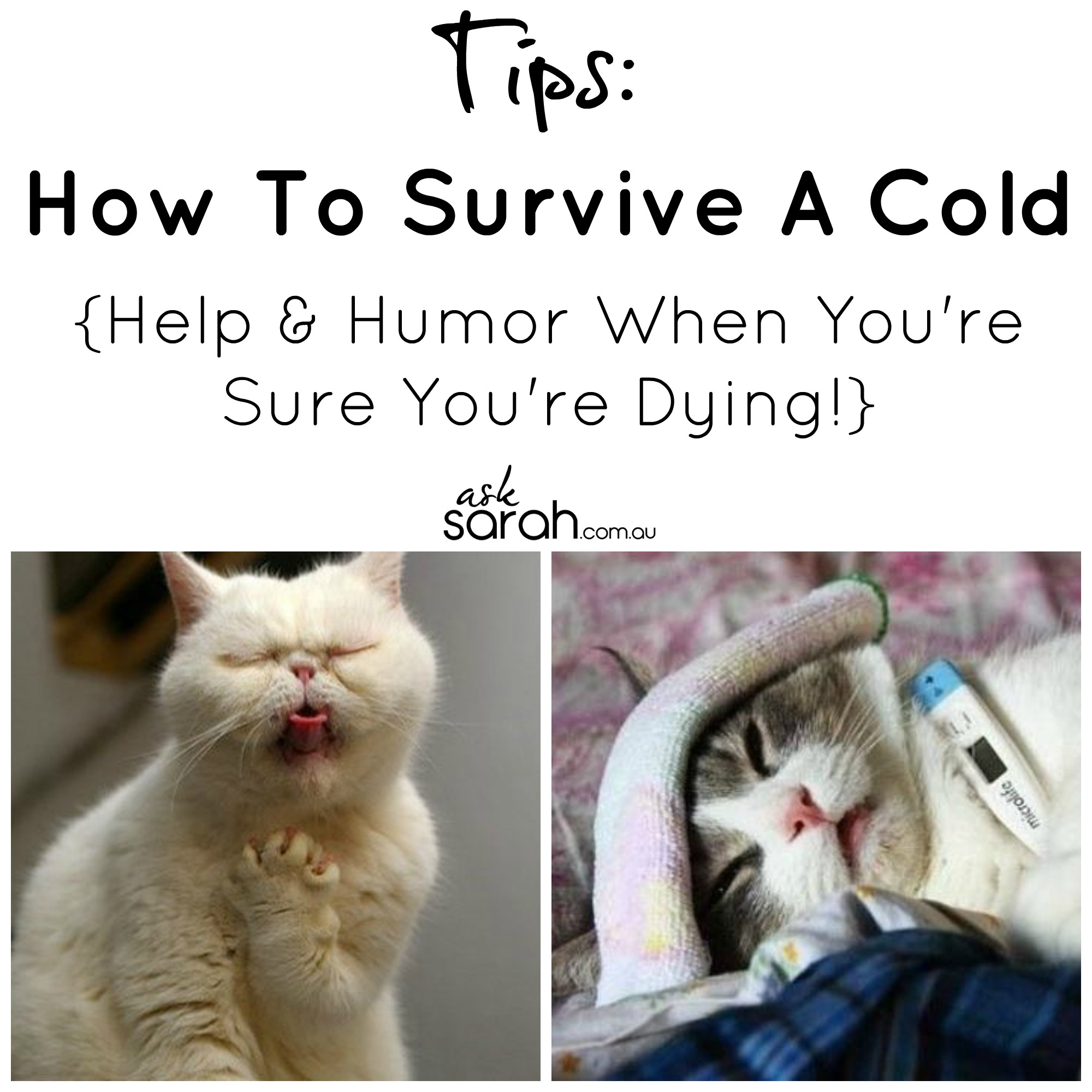 How To Survive A Cold {Help & Humor When You're Sure You're Dying!}