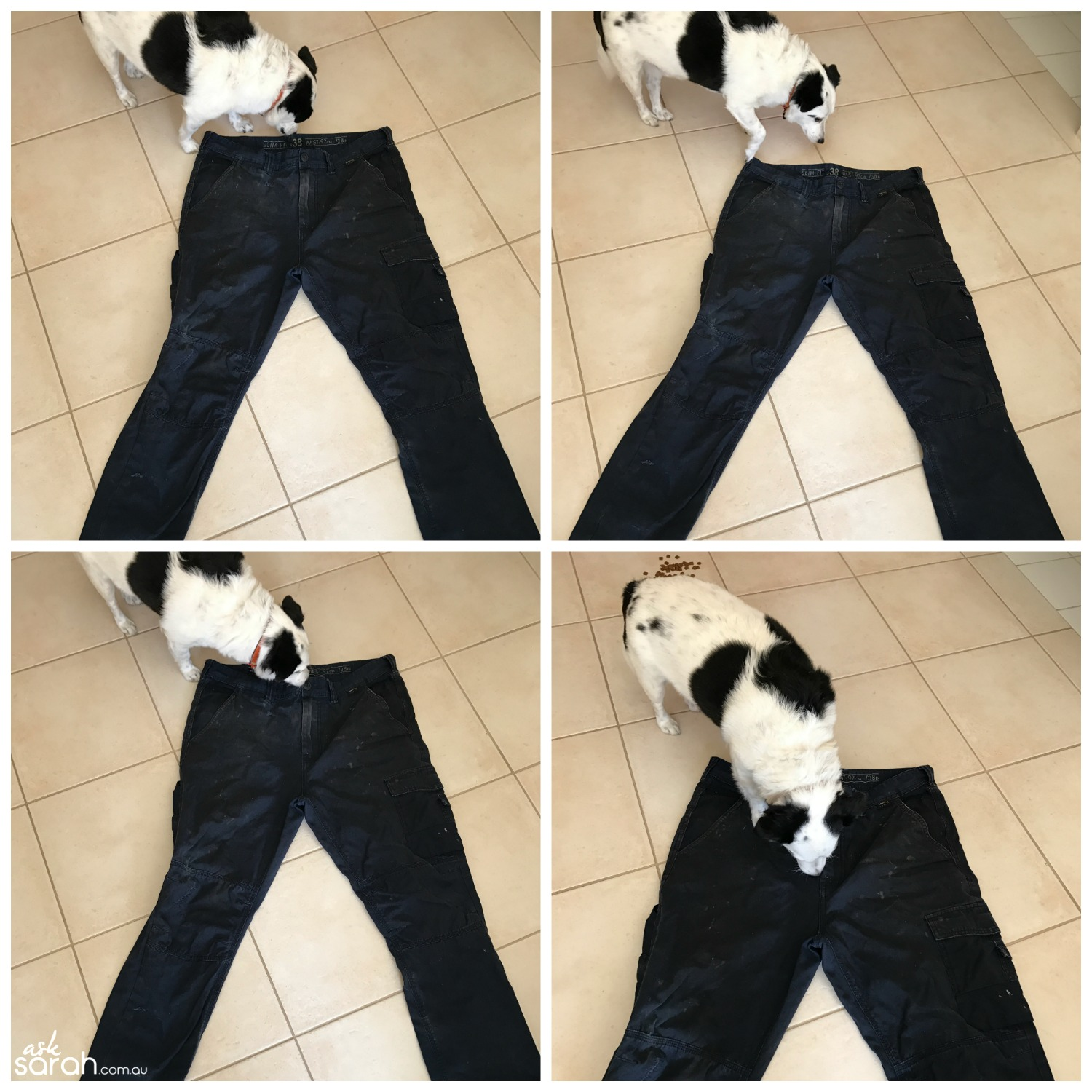 Sew Mending Holes In Heavy Duty Work Wear {Sewing For Tradies} - Dog!